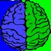 Тренинг мозга