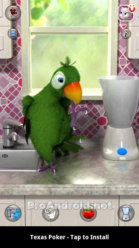 Игра говорящий попугай скачать на компьютер бесплатно